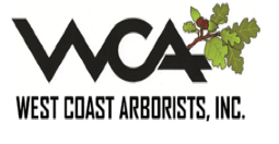 West Coast Arborist  Opens in new window